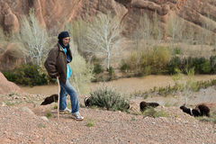 Shepherd in Morocco Royalty Free Stock Photo