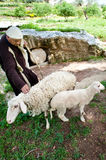 Shepherd at Nazareth Village Stock Photos