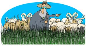 Shepherd with sheep and goats Stock Photo