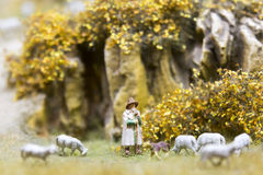 Shepherd And Sheeps Stock Photos