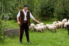 Shepherd Stock Photography