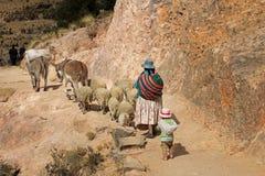 Shepherd sur l'île du soleil, lac Titicaca, Bolivie Photographie stock