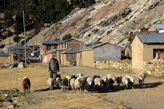 Shepherd sur l'île du soleil, lac Titicaca, Bolivie Photos stock