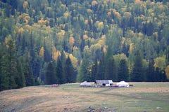 Shepherd tents royalty free stock photos