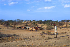 Shepherd Turkana (Kenya) Royalty Free Stock Photography