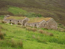 Shepherds Cottages on Hillside. Three Shepherd's huts in the side of a hill in a pasture. This is in Orkney Island, Scotland stock photo