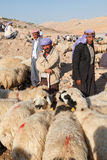 Shepherds and people are in cattle market Stock Images