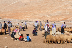 Shepherds and people are in cattle market Royalty Free Stock Photo