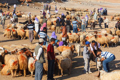 Shepherds and people are in cattle market Royalty Free Stock Images