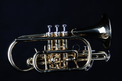 Sheppards's Crook Cornet On Black Stock Photography