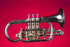 Sheppards's Crook Cornet On Red Royalty Free Stock Images