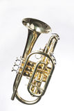 Sheppards's Crook Cornet On White. A gold colored brass sheppard's crook cornet isolated against a white background in the vertical format Stock Image