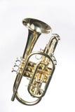 sheppards de l'escroc s de cornet blancs Image stock