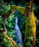 Shepperds Dell Falls Stockbild