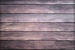 Shera trä Arkivfoto