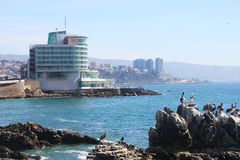 Sheraton Miramar Hotel en Convention Center in Vina Del Mar, Chili Royalty-vrije Stock Afbeeldingen