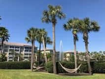 Sheraton Vistana Villages Orlando, Florida royaltyfria bilder