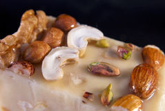 Sherbet with nuts Stock Images