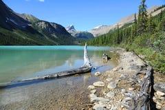 Sherbrooke Lake. In Yoho National Park, Canada Stock Image
