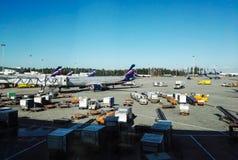 Sheremetyevo flygplats, Ryssland - Augusti, 2017: Sheremetyevo flygplats, ryssflygbolag Aeroflot royaltyfri fotografi