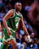 Sherman Douglas Boston Celtics Arkivbild