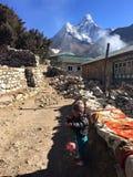 Sherpa behandla som ett barn Fotografering för Bildbyråer