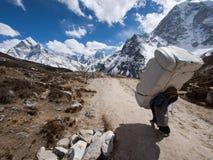Sherpa Porter on Everest Base Camp Trek, Nepal. A sherpa porter carrying a large load near the Himalayan settlement of Lobuche along the Everest Base Camp Trek Royalty Free Stock Photo