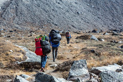Sherpa Porters carrying lots of heavy luggage. Sherpa Porters carrying large and multiple Bags of Luggage of Mountaineering Expedition in Nepal Himalaya rear Stock Photos