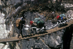 Sherpa and yaks crossing suspension bridge Royalty Free Stock Photo