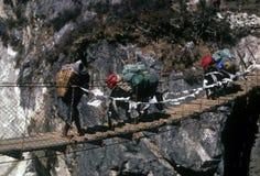 Sherpa and yaks crossing suspension bridge. Crossing, narrow gorge near Pangboche,Khumbu Himalaya,Nepal, Asia Royalty Free Stock Photo