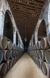 Sherry barrels in Jerez bodega, Spain. Old Sherry barrels in Jerez bodega, Spain Stock Photography