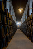 Sherry barrels in Jerez bodega, Spain. Old sherry barrels in Jerez bodega, Spain Royalty Free Stock Photography