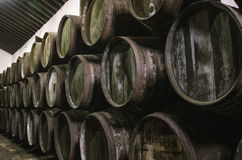 Sherry barrels Royalty Free Stock Photography
