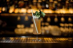 Sherry Cobbler decorated with mint branch and tubule. Sherry Cobbler in the cocktail glass decorated with mint branch and tubule on the blurred backround of bar royalty free stock photography