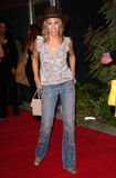 Sheryl Crow Stockfotos