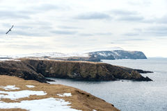 Shetland Islands Stock Images
