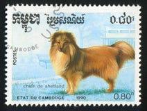 shetland royalty-vrije illustratie