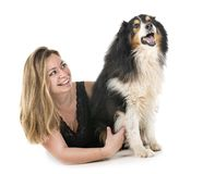 Shetland Sheepdog and woman. In front of white background royalty free stock image