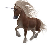 Shetland Unicorn Royalty Free Stock Photos