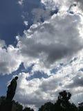 Shevchenko parkerar - KYIV - UKRAINA - på en molnig dag Royaltyfri Foto