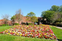 Shewsbury Castle and flowerbed. Royalty Free Stock Images