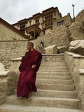 Shey Monastery in India Royalty Free Stock Photography