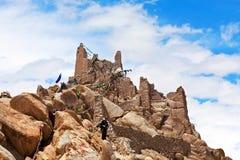 Shey slott i Leh, Indien Royaltyfri Bild