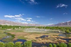 Shey-Tal nahe Leh Ladakh Kaschmir Lizenzfreie Stockbilder