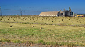 SHF Rice Dryer and Warehous Royalty Free Stock Images