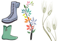 Shhoes and flower. Women shoes and wheat and flower Royalty Free Stock Photography