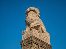 Shi-Cza lions are granite mythological lions brought frm China. In Manchuria such fantastic creatures were considered guardians. Shi-Cza lions are granite stock photos