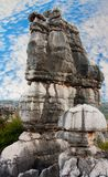 Shi Lin stone forest national park.China. Royalty Free Stock Photos