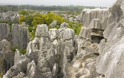 Shi Lin stone forest national park. Stock Photo