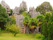 Shi Lin stone forest national park. Kunming. Stock Photos